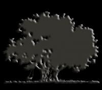 logo-grijs_0